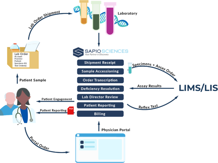 An illustration of how clinical lab management software helps the workflow and efficiency for everyone involved.